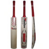 BDM Titanium Cricket Bat