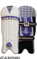 CA PLUS  Wicket Keeping Pads