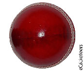 Unmarked Cricket Ball  - Red